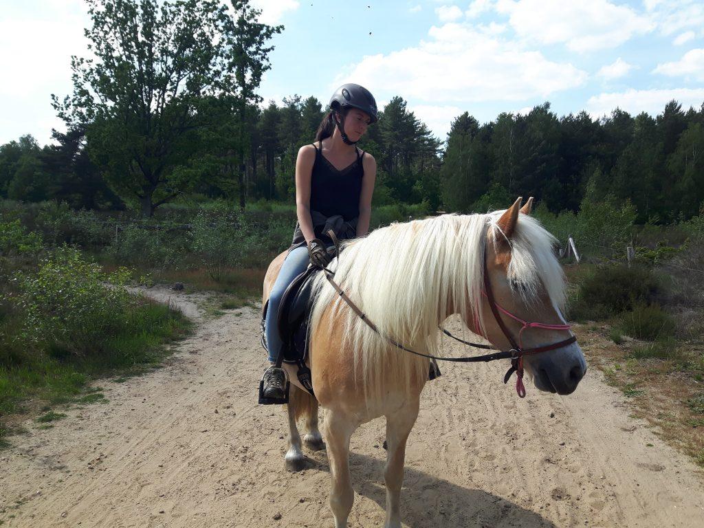 Azira-Wandeling-Gerhagen-Therapie-met-paarden